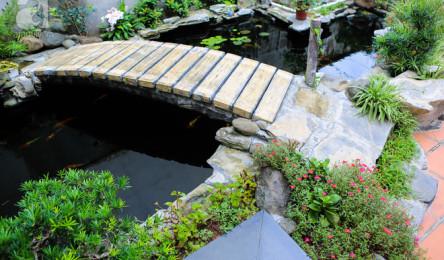 Ngôi nhà vườn rộng 1200m² đẹp ngất ngây ngay ở ngoại thành Hà Nội